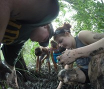 International Service Learning Fun Mud Flats