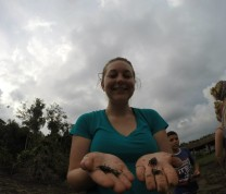 International Service Learning Program Crab Hand Tourism